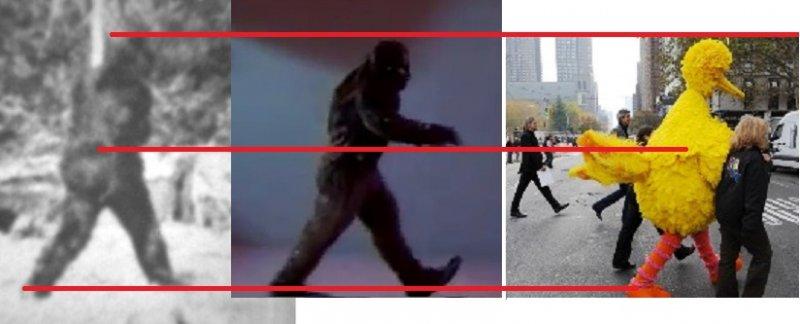 3-similarities.jpg