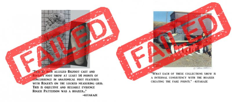 kitakaze's evidence of Patterson hoaxin'.jpg