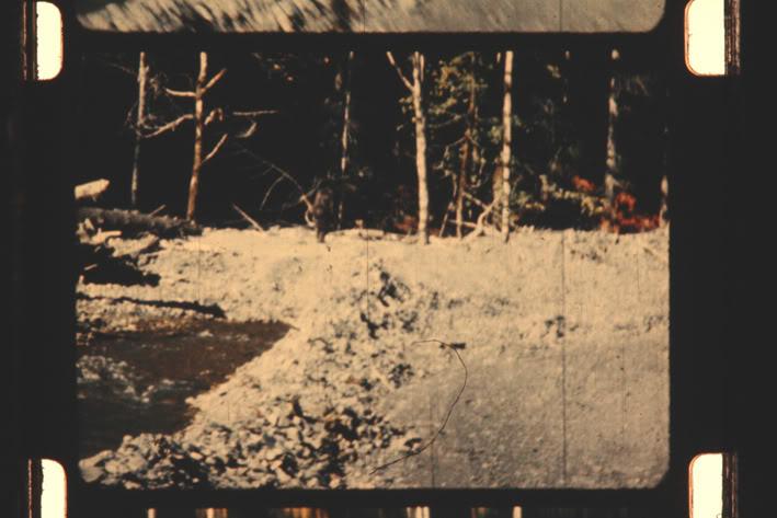 PGF Early Creek Frame.jpg