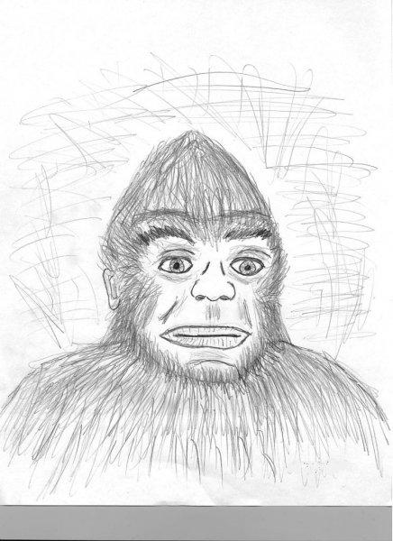 BF sketch of 4-16-11.jpg