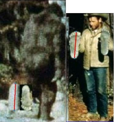 bigfoot-patty height Roger was 5-2 maybe.jpg