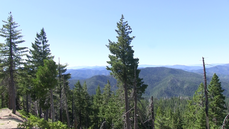 Siskiyou Blue Creek Drainage #1.png