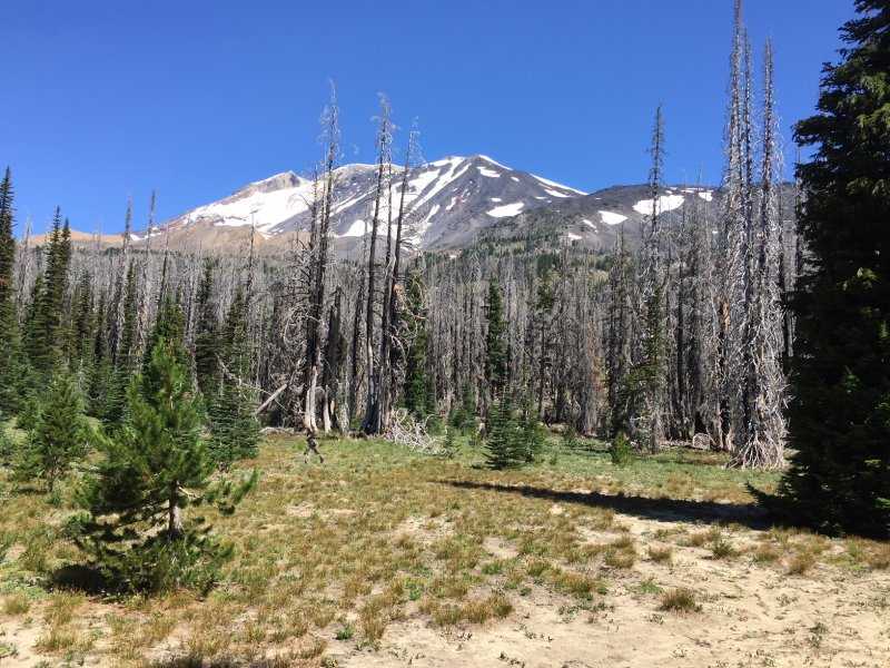 Death Zone #3 Mt Adams Wilderness.JPG