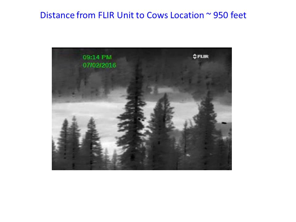 Thermal videos and buying a monocular