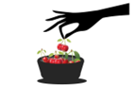 cherry-picking-salesforce-cases-01.png