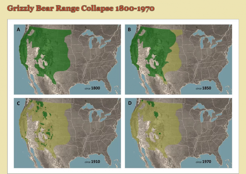 Grizzly Bear Range Collapse 1800-1970.PNG