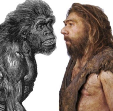 The-evolution-of-Neanderthals-over-last-100-years-says-more-about-us.jpg