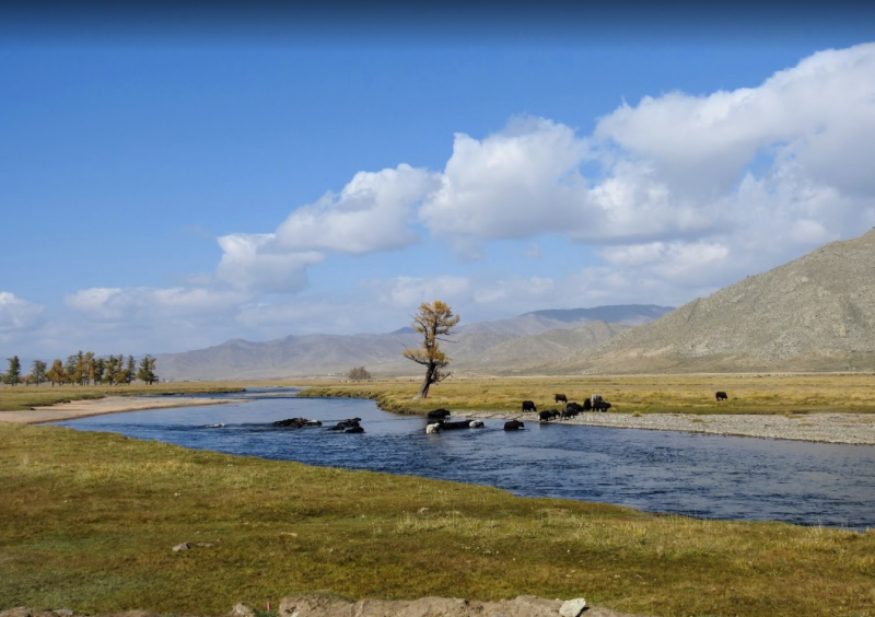 mongolia-ulgii-2.PNG