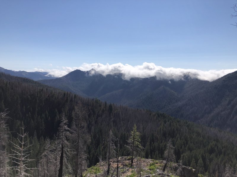 Siskiyou_Wilderness.JPG