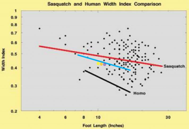 Unshod vs. shod graph.png